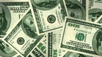 Tỷ giá ngoại tệ ngày 13/2/2020: USD tại các NHTM giảm