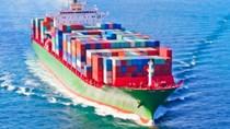 Sản lượng hàng hóa qua cảng biển vẫn tăng trưởng 10% giữa dịch COVID-19