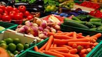 Tin chú ý 17/3: Đề xuất mở thêm cửa khẩu xuất trái cây sang TQ; giá gạo XK tăng