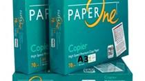 Thị trường nhập khẩu giấy các loại 2 tháng đầu năm 2020