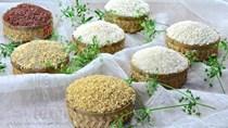 Diễn biến giá gạo tuần qua: Thủ tướng đồng ý xuất khẩu 400.000 tấn