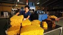 Xuất khẩu cao su 2 tháng đầu năm 2020 sụt giảm mạnh