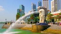 Thương vụ Singapore kêu gọi các doanh nghiệp hợp tác đẩy lùi dịch bệnh