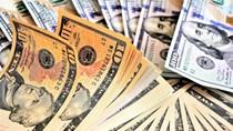 Tỷ giá ngoại tệ ngày 19/5/2020: USD đồng loạt giảm