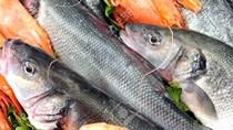Xuất khẩu thủy sản 5 tháng đầu năm 2020 tiếp tục giảm