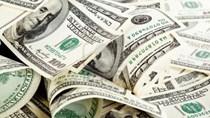 Tỷ giá ngoại tệ ngày 25/6/2020: USD giảm giá
