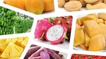 Xuất khẩu rau quả 5 tháng đầu năm 2020 thu về gần 1,5 tỷ USD
