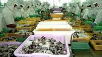 Xuất khẩu thủy sản: Không nên bỏ qua thị trường nhỏ