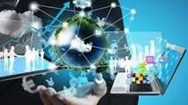 Cục XNK triển khai dịch vụ công trực tuyến cấp độ 3 một số thủ tục hành chính