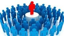 Chính phủ ban hành Nghị định mới về vị trí việc làm