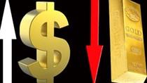 Giá vàng chiều ngày 24/9/2020 giảm mạnh sát mốc 55 triệu đồng/lượng