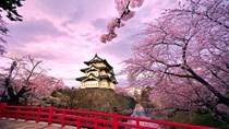 Xuất khẩu hàng hóa sang Nhật Bản 9 tháng đầu năm 2020 đạt trên 14 tỷ USD