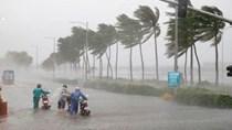 Thông báo 371/TB-VPCP về khắc phục thiệt hại do mưa lũ, bão số 9