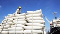 Thị trường xuất khẩu gạo 10 tháng đầu năm 2020