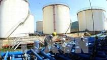 Nhập khẩu xăng dầu 11 tháng đầu năm 2020 giảm 47% kim ngạch