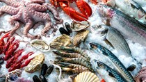 Các thị trường chủ yếu cung cấp thủy sản cho Việt Nam 11 tháng đầu năm 2020
