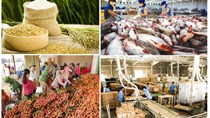 Năm 2021 xuất khẩu nông sản đạt 44 tỷ USD?