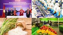 Thương mại song phương Việt Nam - Anh năm 2019