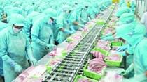 Việt Nam tham vọng sản xuất và xuất khẩu thủy sản dẫn đầu thế giới