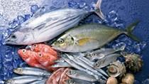 Tháng 1/2021 xuất khẩu thủy sản của Na Uy giảm