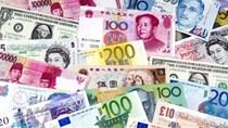 Tỷ giá ngoại tệ 30/03/2021: USD đồng loạt tăng, Euro giảm