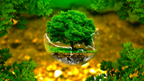 Nghị định 54/2021/NĐ-CP quy định về đánh giá sơ bộ tác động môi trường