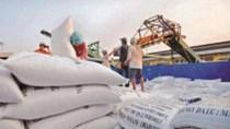 Gạo nhập khẩu từ Ấn Độ vào Việt Nam tăng