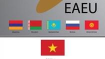 Hàng Việt Nam sang Liên minh kinh tế Á-Âu tăng hơn 31% nhờ VNEAEUFTA