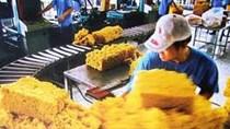 Nhập khẩu cao su từ Campuchia 6 tháng năm 2021 tăng trên 500%