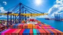 Tình hình xuất nhập khẩu nửa đầu tháng 7/2021 (từ ngày 01/7 đến ngày 15/7/2021)