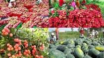 """Tăng tốc gỡ khó, """"dọn đường"""" cho nông sản Việt sang Trung Quốc"""
