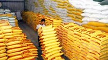 Xuất khẩu thức ăn gia súc 7 tháng đầu năm 2021 sang Trung Quốc tăng gần 110%