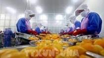 Algeria tạm ngừng nhập khẩu nhiều sản phẩm có nguồn gốc động vật