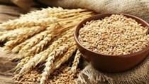Nhập khẩu lúa mì 8 tháng đầu năm 2021 tiếp tục tăng mạnh