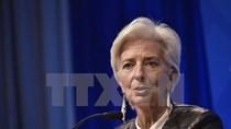 IMF: Thị trường tài chính lung lay nếu Anh rời khỏi EU