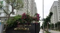 Capital House ưu đãi cho khách thuê Kios 2 tầng ở Ecohome