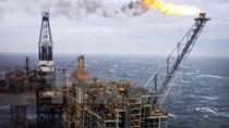 Ấn Độ và Mỹ nhất trí thúc đẩy hợp tác trong lĩnh vực dầu khí