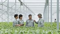 Vingroup bắt tay 1.000 hợp tác xã, hộ nông dân cung ứng nông sản sạch