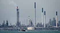 OPEC dự báo giá dầu sẽ giữ ở mức 50-60 USD mỗi thùng