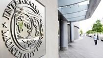 IMF cảnh báo nợ toàn cầu ở mức cao kỷ lục, tăng trưởng ảm đạm