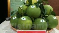"""""""Ngày hội trái cây Lục Ngạn"""" quảng bá các sản phẩm nông sản chủ lực"""