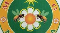 """Cấp nhãn hiệu tập thể """"Mật ong Minh Hóa"""""""