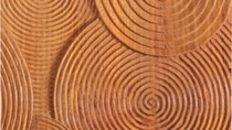 Giá gỗ xẻ tại CME sáng ngày 20/3/2017