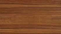 Giá gỗ xẻ tại CME sáng ngày 24/5/2017