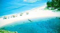 Chiêm ngưỡng những con đường giữa biển đẹp ngây ngất ở Việt Nam