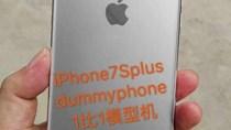 Lộ ảnh iPhone 7s Plus với vỏ kính
