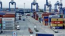 Việt Nam ở vị trí trung tâm cơ cấu kinh tế mới của APEC
