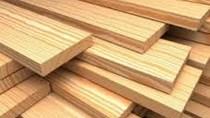 Giá gỗ xẻ tại CME sáng ngày 21/11/2017
