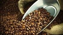 Giá cà phê kỳ hạn tại NYBOT sáng ngày 23/11/2017