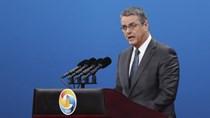 WTO hạ thấp nguy cơ bảo hộ thương mại